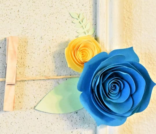 blue rose, yellow rose, twine, clothespin on bulletin board